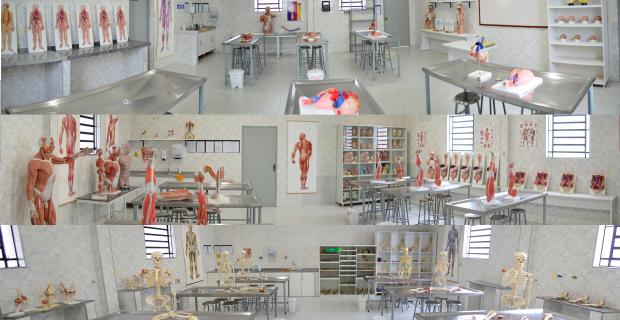 Faculdade Católica moderniza os laboratórios de anatomia humana
