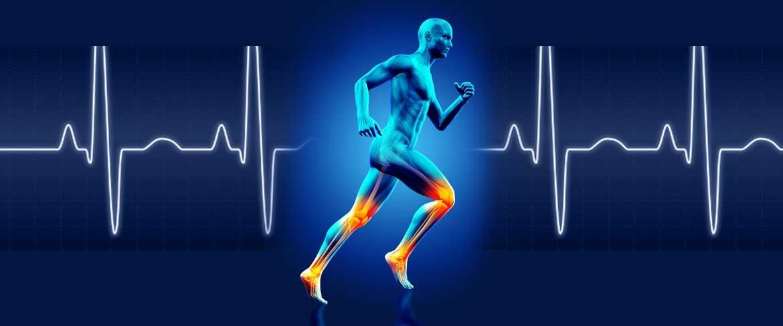 Fisiologia do Exercício na Saúde e no Desempenho